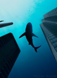 Hajar på gatan