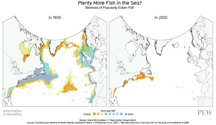 Fiskbestånd 1900/2000