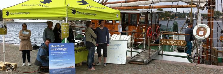 Naturskyddsföreningens tält på Skeppsbrokajen med Shamrock i bakgrunden